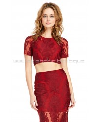 Embroidered Ethereal Burgundy Crop Top